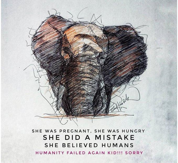 Vụ voi mẹ mang thai chết tức tưởi vì ăn phải dứa nhồi pháo nổ: Những bức tranh tưởng niệm chứa đựng nỗi đau khiến thế giới phải suy ngẫm-10
