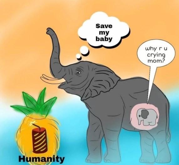 Vụ voi mẹ mang thai chết tức tưởi vì ăn phải dứa nhồi pháo nổ: Những bức tranh tưởng niệm chứa đựng nỗi đau khiến thế giới phải suy ngẫm-9