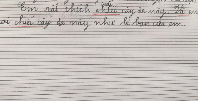 Cười đau bụng với những bài văn tả cây yêu thích của học sinh lớp 1: Hài hước, ngây ngô nhưng bất ngờ nhất là pha tổ lái khó đỡ-2