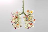 Khi môi trường luôn ô nhiễm và bệnh COVID-19 vẫn 'rình rập', hãy nhớ 3 việc cần tránh xa và 9 việc cần làm để phổi luôn khỏe mạnh