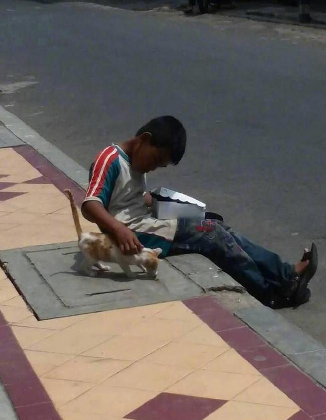 Cậu bé lem luốc ngồi bệt trên vỉa hè giữa trời nắng, tay bốc thức ăn nhưng lại có hành động cực đặc biệt với chú mèo lạ khiến bao người xúc động-3