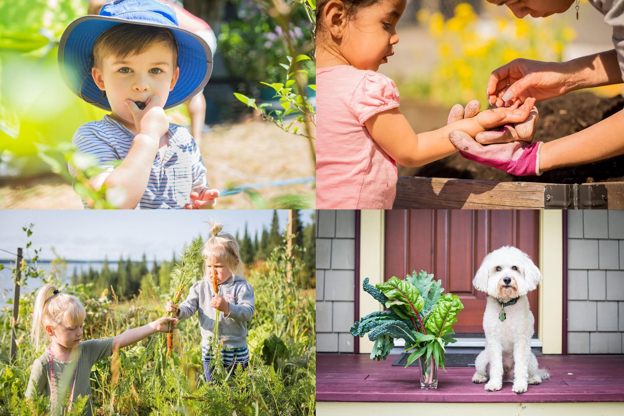 Cô gái xinh đẹp luôn tràn ngập năng lượng hạnh phúc khi trồng cả khu vườn toàn rau quả sạch-14