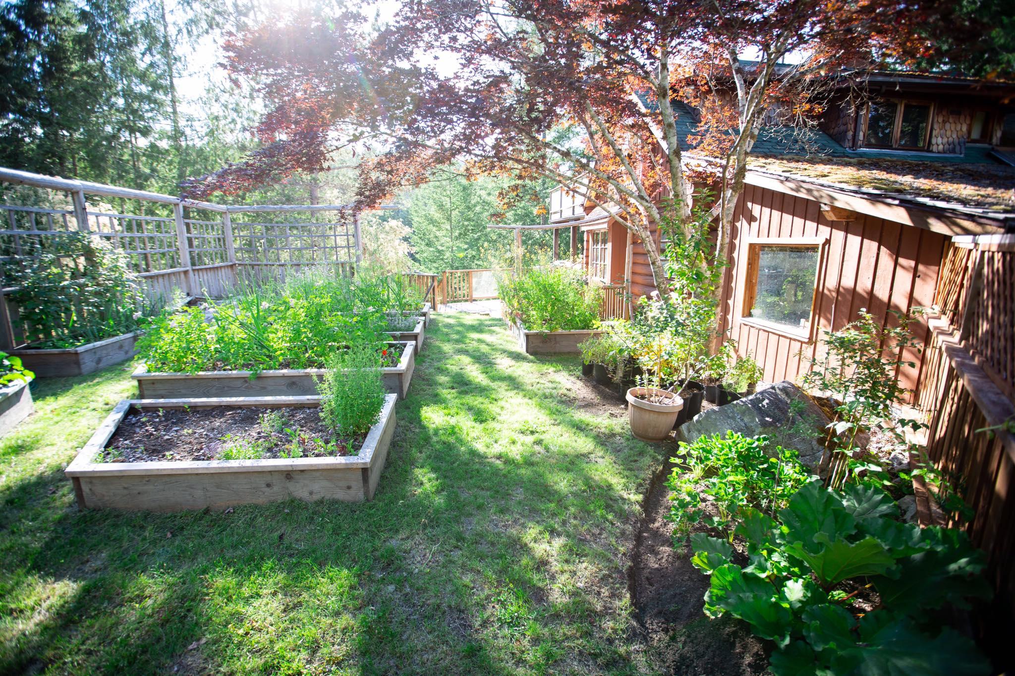 Cô gái xinh đẹp luôn tràn ngập năng lượng hạnh phúc khi trồng cả khu vườn toàn rau quả sạch-18