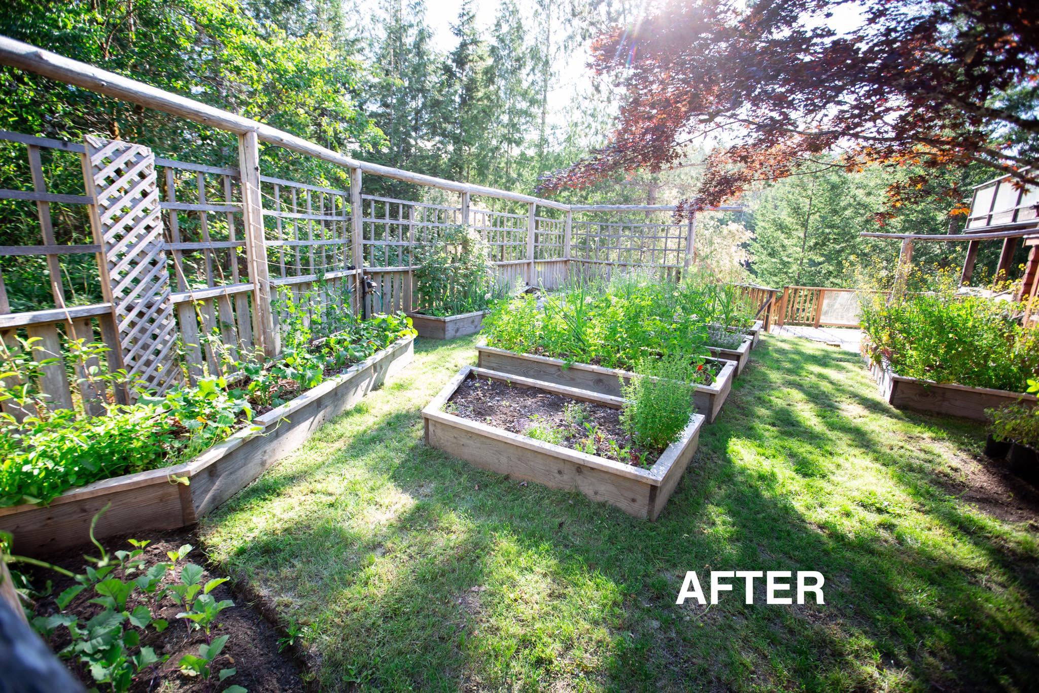 Cô gái xinh đẹp luôn tràn ngập năng lượng hạnh phúc khi trồng cả khu vườn toàn rau quả sạch-27