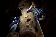 Đưa xác ướp 3.000 năm tuổi của công chúa Ai Cập ra khỏi quan tài, phát hiện bức chân dung bí ẩn cùng hàng loạt câu hỏi chưa có lời giải đáp