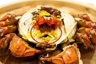 Ăn hải sản mấy chục năm ai nghĩ đơn giản PHẦN MÀU VÀNG trong con cua biển là GẠCH đều sai hết rồi nhé!