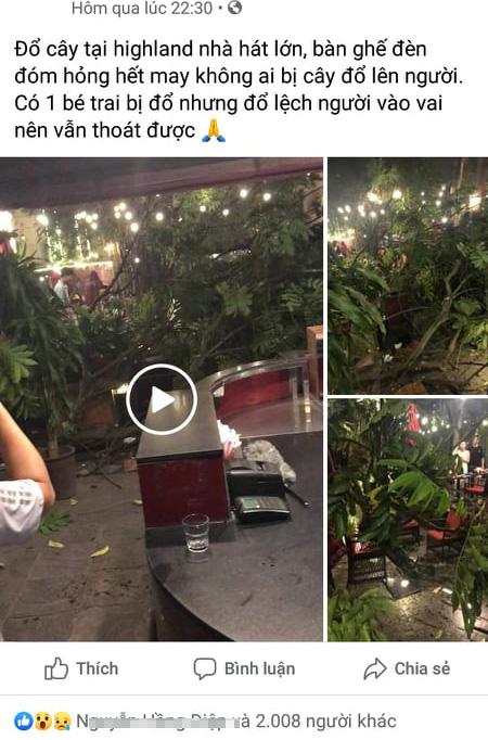 Hà Nội: Cành cây gãy trúng quán cà phê khiến nhiều người chạy tán loạn-1