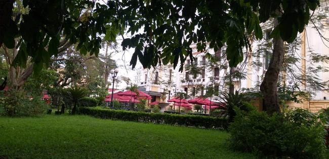 Hà Nội: Cành cây gãy trúng quán cà phê khiến nhiều người chạy tán loạn-4