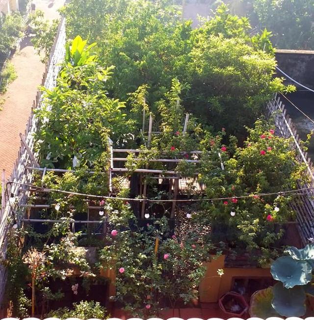 Vườn cây, ao cá đẹp mê trên sân thượng tầng 4 của ông chủ quán phở Sài Gòn-1
