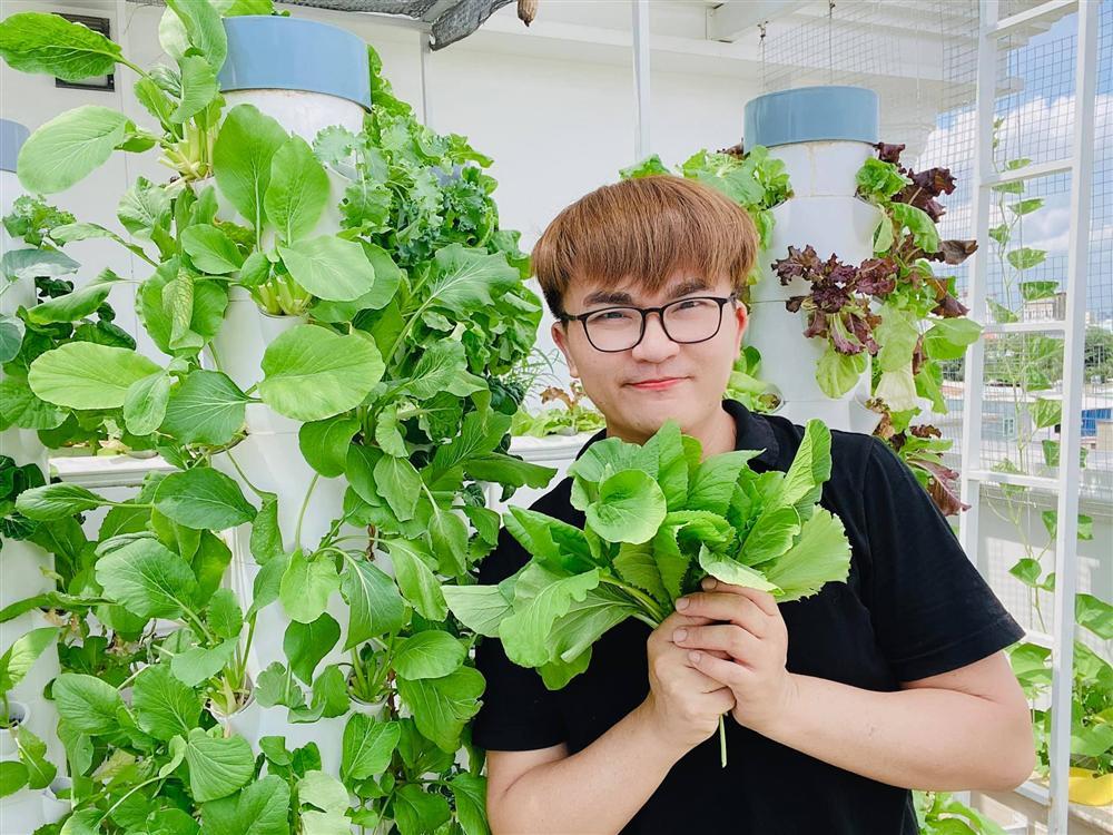 Ngắm vườn rau và nấm sạch do chính tay MC Đại Nghĩa tự trồng trên sân thượng nhà mình ở quận 7, TP HCM-1