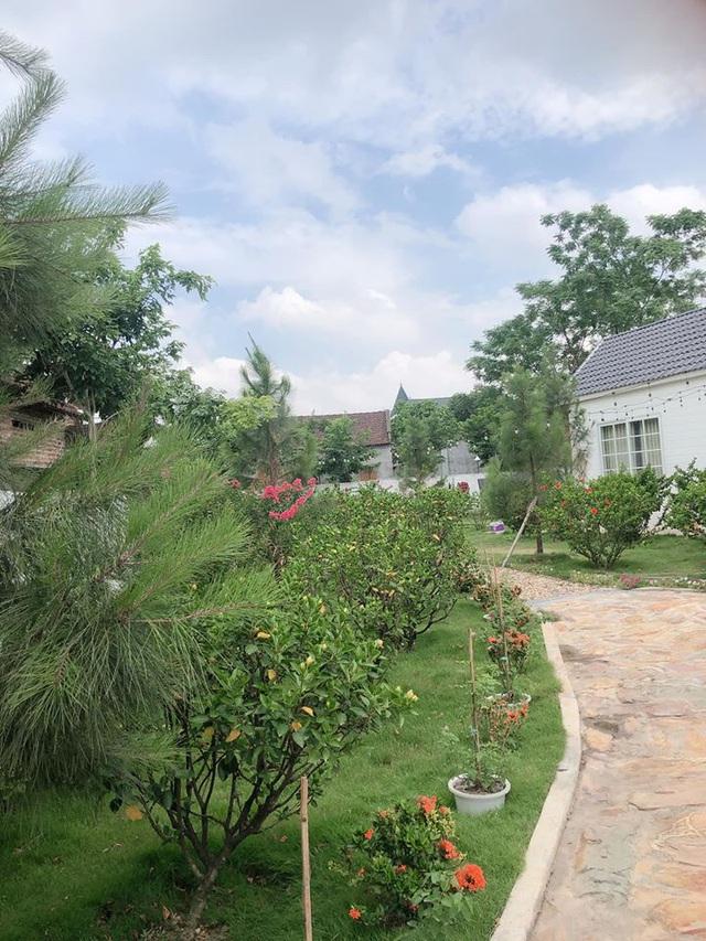 Mê mẩn khu vườn ngập tràn hoa lá của Khánh Thi, Duy Nam, Mai Ngọc-6