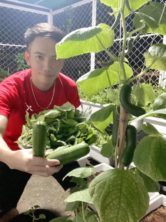 Khu vườn trĩu trái trên sân thượng của ca sĩ Phạm Trưởng-3