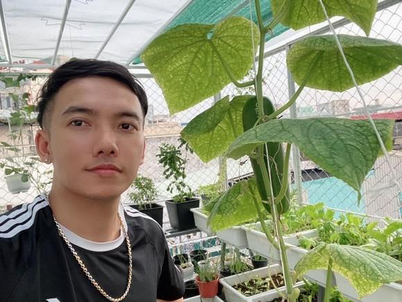 Khu vườn trĩu trái trên sân thượng của ca sĩ Phạm Trưởng-4