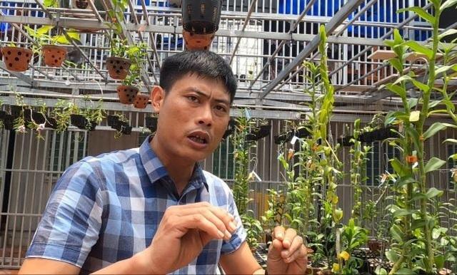 Mua 3 cây lan đột biến gene giá 32 tỷ, người thật việc thật ở Bình Phước-2