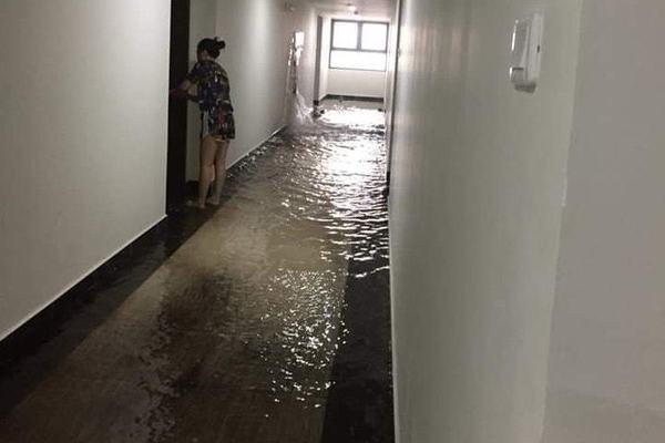 Mưa lớn, dân chung cư cũng tát nước như ở nhà phố-8