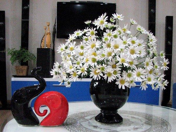 7 loại hoa đẹp hợp để phòng khách, hút tài lộc, không sớm thì muộn cũng giàu sang-4