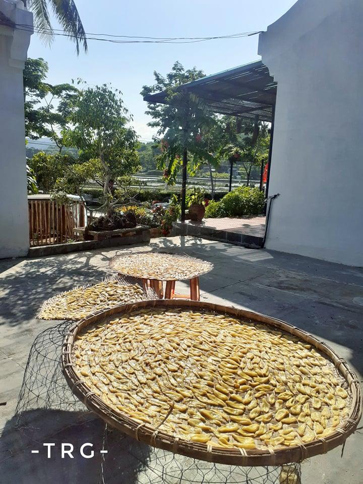 Đẹp giản dị ngôi nhà cấp 4 với chi phí 650 triệu con trai kiến trúc sư xây tặng cha mẹ dưỡng già ở Quảng Nam-5