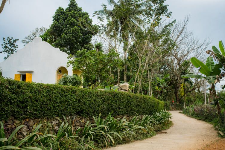 Đẹp giản dị ngôi nhà cấp 4 với chi phí 650 triệu con trai kiến trúc sư xây tặng cha mẹ dưỡng già ở Quảng Nam-6