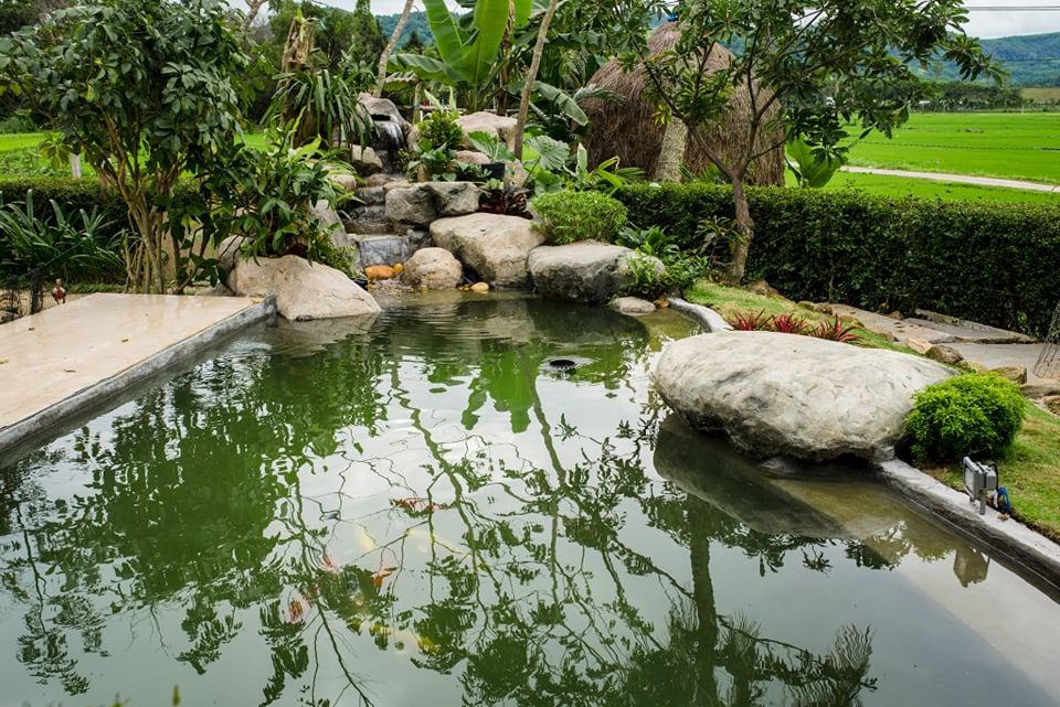 Đẹp giản dị ngôi nhà cấp 4 với chi phí 650 triệu con trai kiến trúc sư xây tặng cha mẹ dưỡng già ở Quảng Nam-7