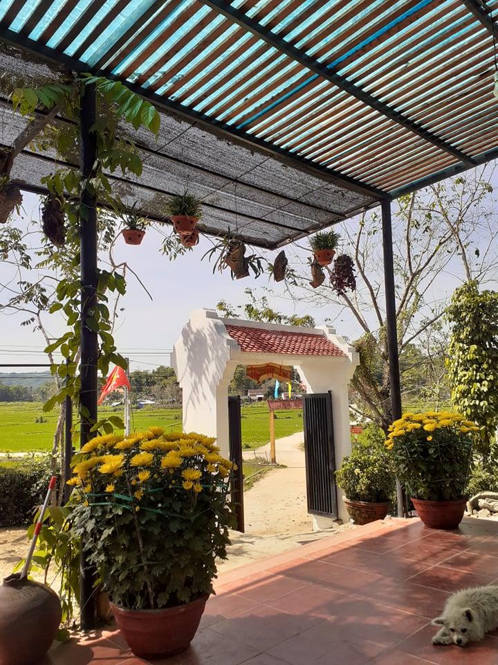 Đẹp giản dị ngôi nhà cấp 4 với chi phí 650 triệu con trai kiến trúc sư xây tặng cha mẹ dưỡng già ở Quảng Nam-13