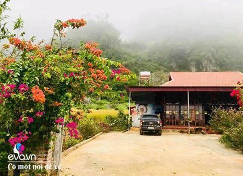 """Bỏ phố lên rừng"""", vợ chồng 8X đến Mộc Châu dựng nhà sàn, trồng lúa nương trong vườn 5000m²-1"""