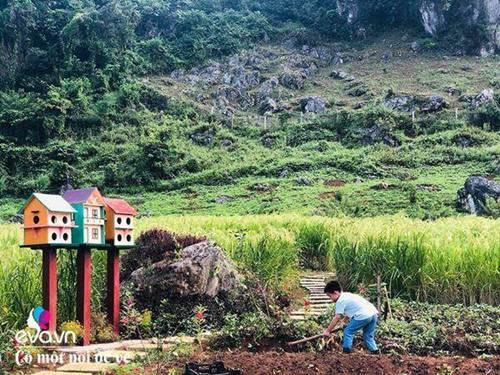 """Bỏ phố lên rừng"""", vợ chồng 8X đến Mộc Châu dựng nhà sàn, trồng lúa nương trong vườn 5000m²-10"""