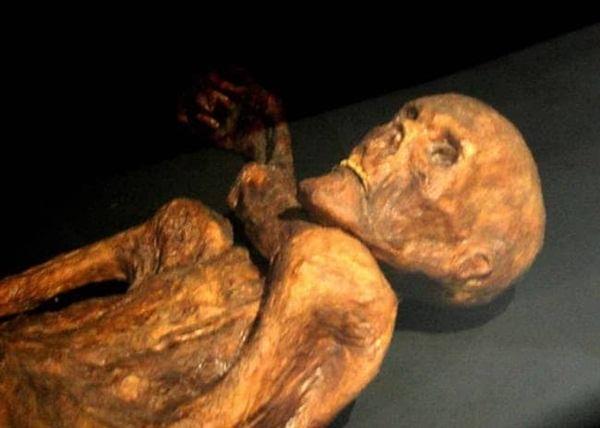 Xác ướp lâu đời nhất của loài người từng được tìm thấy và bí ẩn lời nguyền đáng sợ đoạt mạng 7 người-2