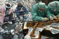 Xác ướp lâu đời nhất của loài người từng được tìm thấy và bí ẩn lời nguyền đáng sợ đoạt mạng 7 người