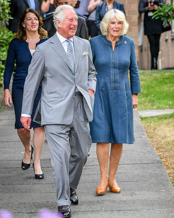 Hoàng tử William trông chừng em trai Harry ở Mỹ bằng việc gọi video nhưng tỏ thái độ lạnh nhạt với Meghan Markle-3