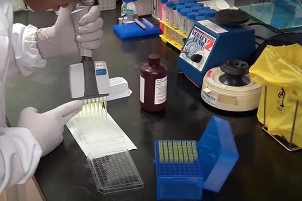 Phát hiện 5 kháng thể chống lại virus gây Covid-19-1