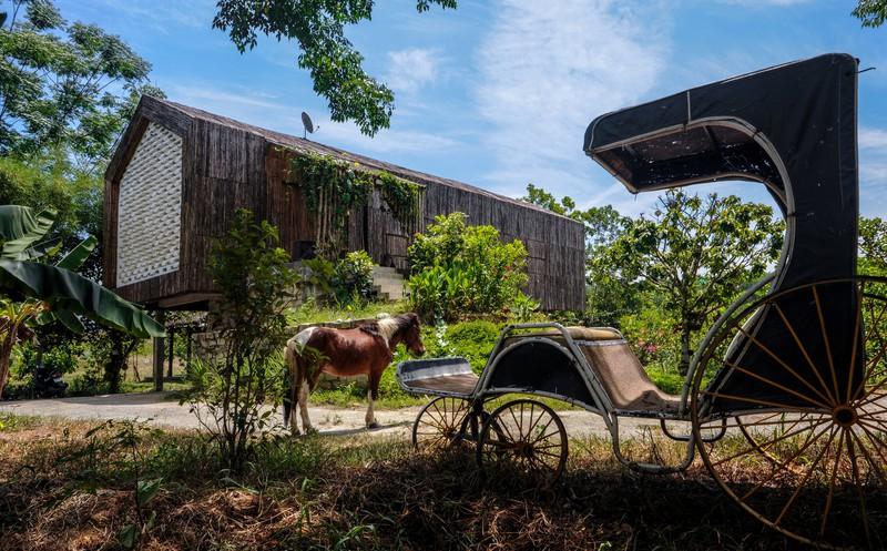 Lạc vào ngôi nhà cổ tích của đôi vợ chồng trẻ tại Đà Nẵng-5