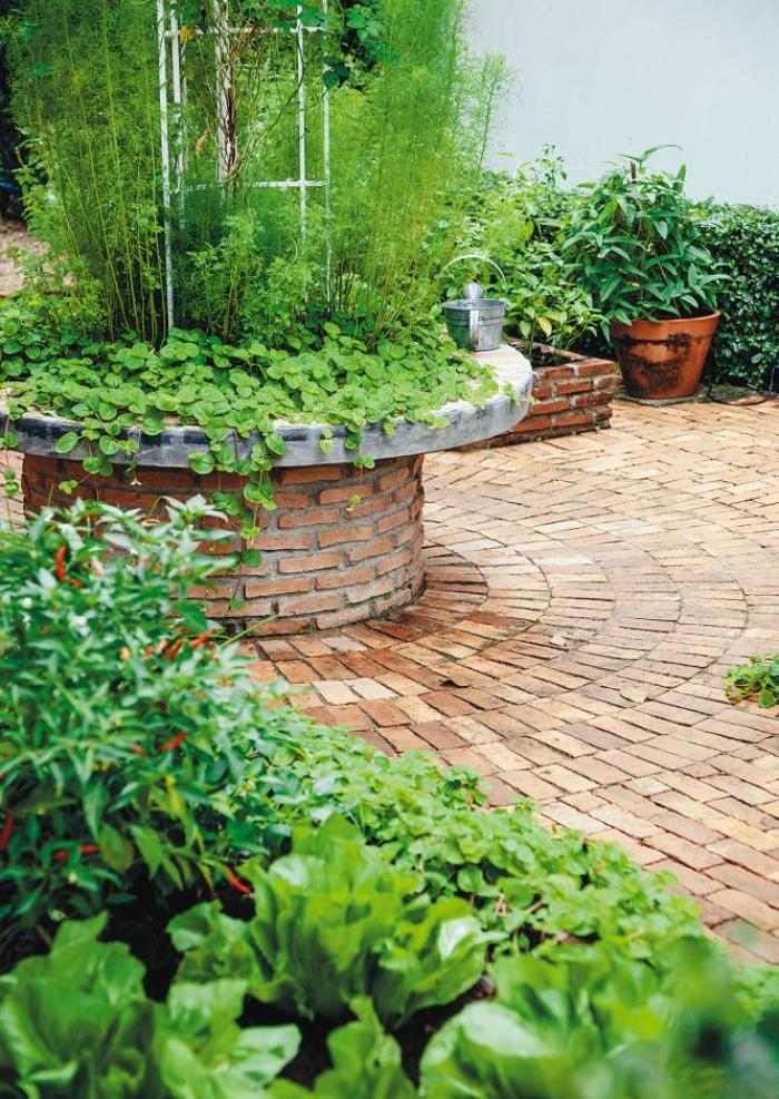 3 cách thiết thực giúp bạn tạo vườn rau xanh sạch trong nhà phố chật hẹp-2