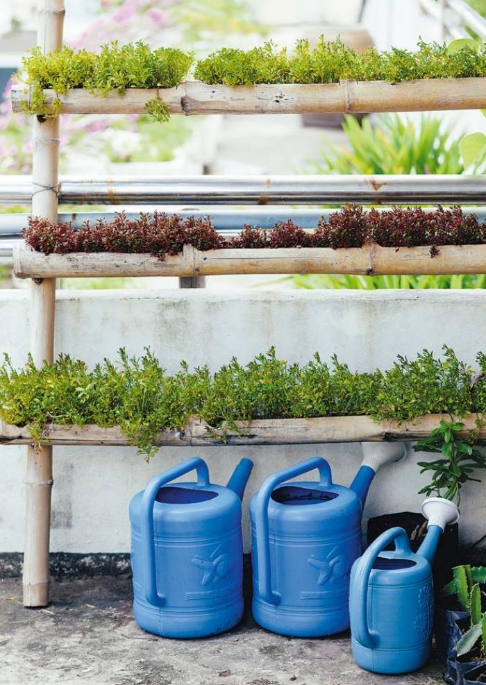 3 cách thiết thực giúp bạn tạo vườn rau xanh sạch trong nhà phố chật hẹp-3