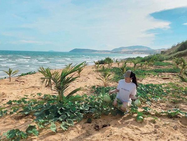 Sao Việt có cơ ngơi sát biển: Đàm Vĩnh Hưng, Bảo Thy không bằng ca sĩ lấy chồng đại gia-7