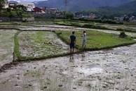 Nóng: Thảm án kinh hoàng 3 người tử vong ở Điện Biên