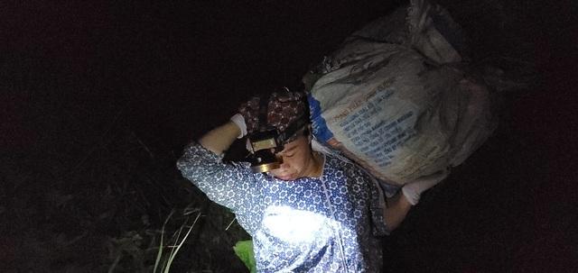 Dậy từ 2 giờ hái rau bí, bà trùm kiếm tiền triệu nơi bãi giữa sông Hồng-3