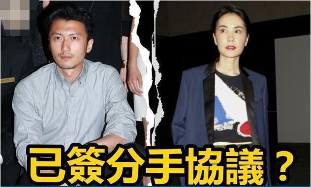 Bố Tạ Đình Phong ngầm xác nhận nam tài tử chính là cha đẻ con trai út của Trương Bá Chi?-3