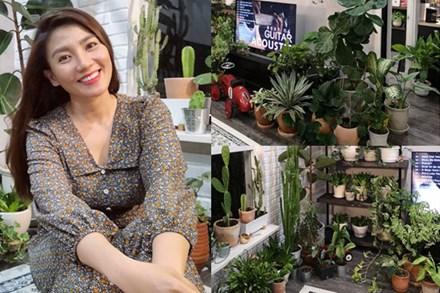 Sở hữu hơn 100 loài cây, nữ MC 8x bật mí bí quyết trồng cây trong nhà vừa đẹp lại chẳng lo thiếu oxy