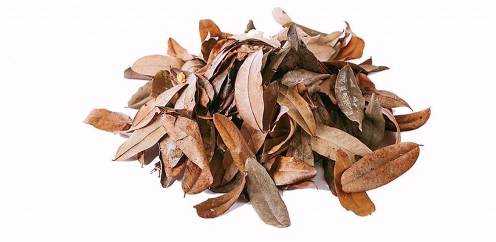 Tự làm phân bón từ thực phẩm bỏ đi, vừa tiết kiệm chi phí vừa giúp cây lớn nhanh như thổi-2