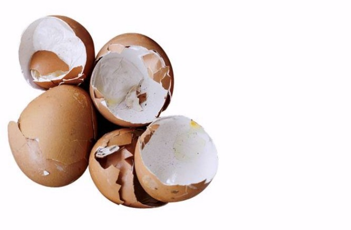 Tự làm phân bón từ thực phẩm bỏ đi, vừa tiết kiệm chi phí vừa giúp cây lớn nhanh như thổi-3