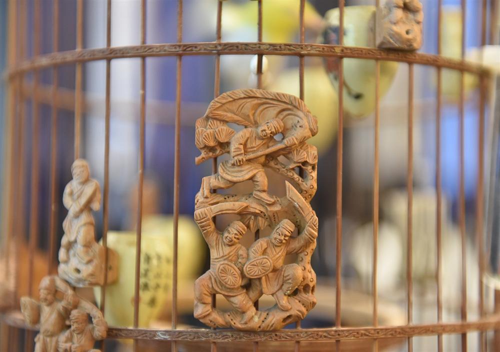 Mãn nhãn bộ sưu tập chim quý hiếm, giá tiền tỷ của vua chim màu Việt-13