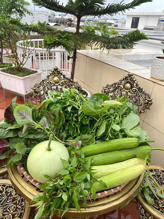 Mẹ đảm Hải Phòng trồng rau, nuôi cá trên sân thượng biệt thự triệu USD-6