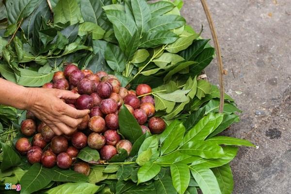 Truyền thống ăn Tết Đoan ngọ ở các vùng khác nhau thế nào-2