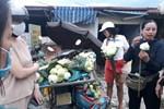 Mùa sen về, trà ướp bông sen tươi 40 ngàn/bông đắt khách, người làng sen Tây Hồ ngày bán gần 1000 bông cho khách mang đi biếu-10
