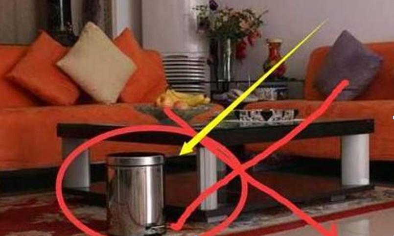 Những đồ vật đại kỵ người giàu không bao giờ để trong phòng khách, cái thứ 2 cực tiện lợi nhiều gia đình phạm phải-2