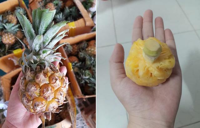 Thực hư dứa Thái mini siêu ngọt giảm giá sập sàn 10.000 đồng/kg-1