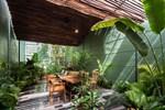 Nhà vườn không cần đến gạch vữa khiến hàng xóm tò mò ở Vũng Tàu