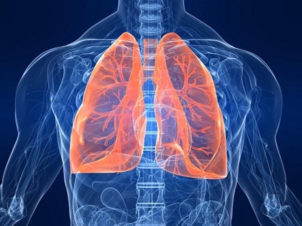 Phổi của chúng ta rất cần được chăm sóc bằng những thực phẩm này: Bạn hãy ăn nhiều để phổi được làm sạch, giữ ẩm và nuôi dưỡng tốt nhất-1