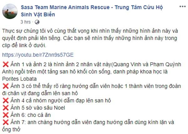 Quang Vinh và Phạm Quỳnh Anh bất ngờ bị lên án vì hành động phá hoại tài nguyên thiên nhiên biển-1