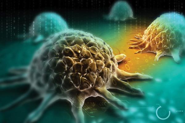 7 điều mà ung thư rất sợ, nếu tuân thủ làm theo thì sẽ luôn trường thọ